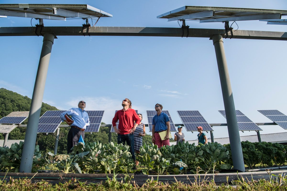 Ideas to Embrace Nature and Go Solar!
