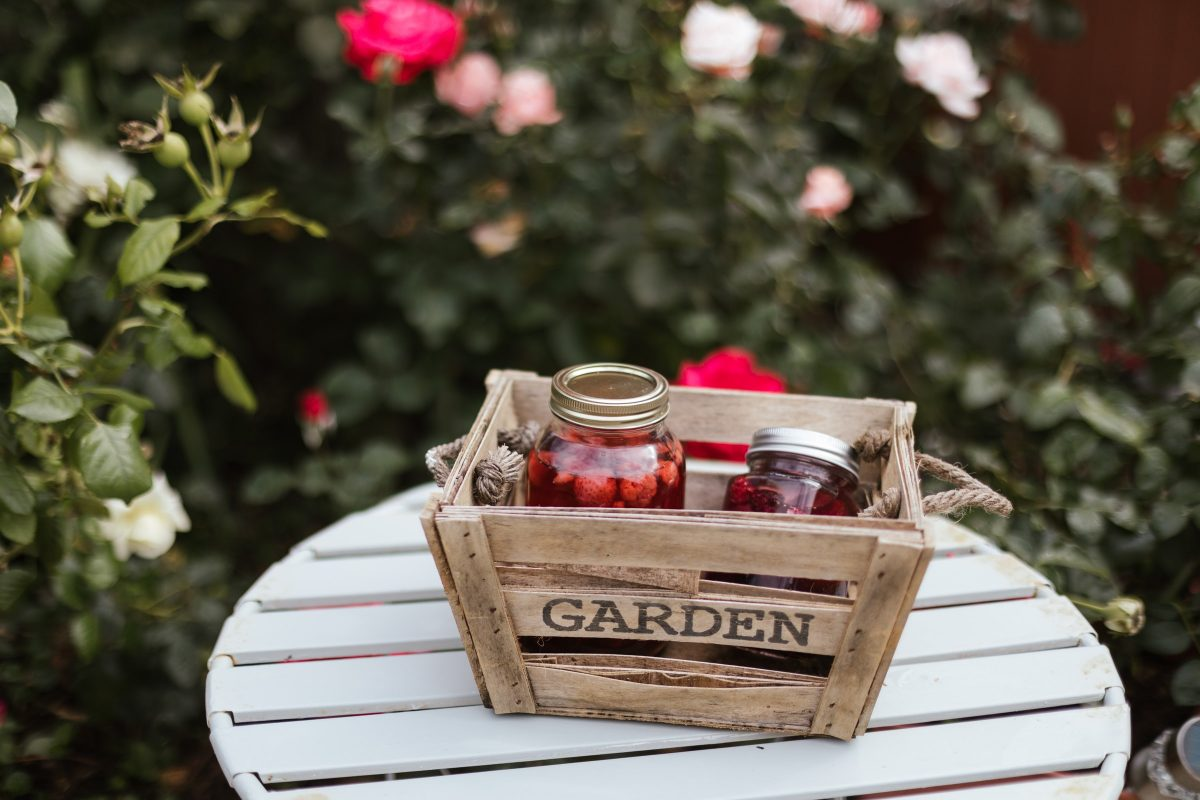 How to Maintain a Healthy Garden – 7 Useful Tips