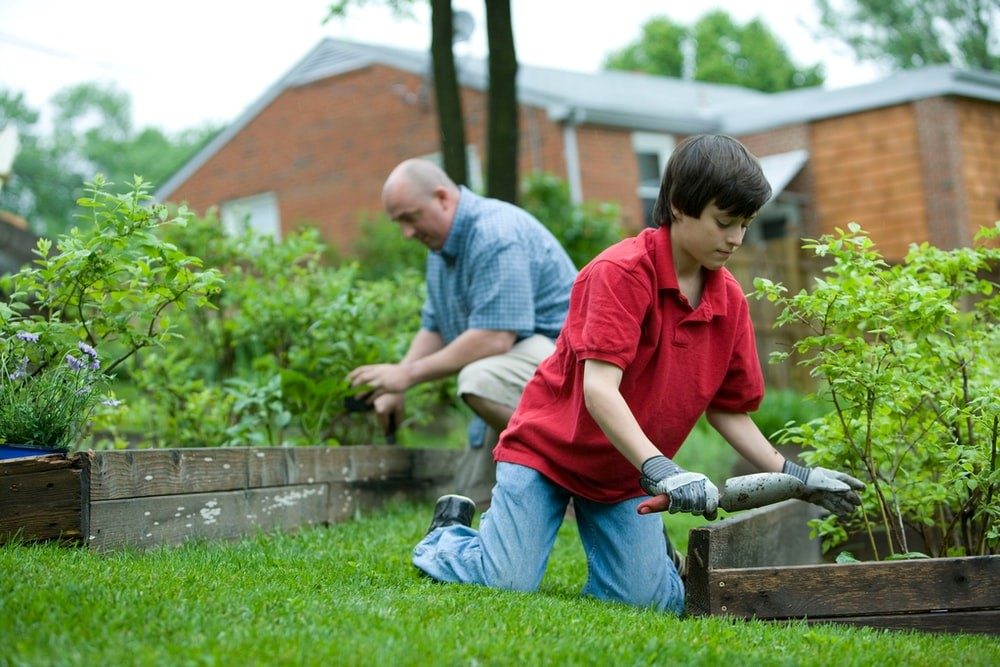 5 Perfect Tips to get an Energy-Efficient Garden